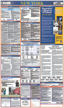 Labor Law Poster New York (Spanish),State And Federal 40X24