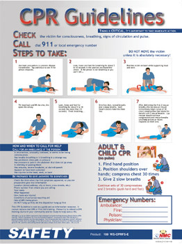 Poster Cpr Guidelines 24 X 18