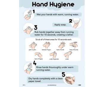 Poster Hand Hygiene 24X18  Laminated