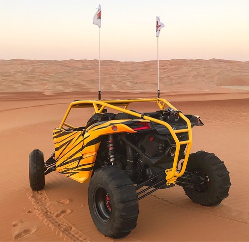X-3 Sport Cage | Can-Am Maverick X3