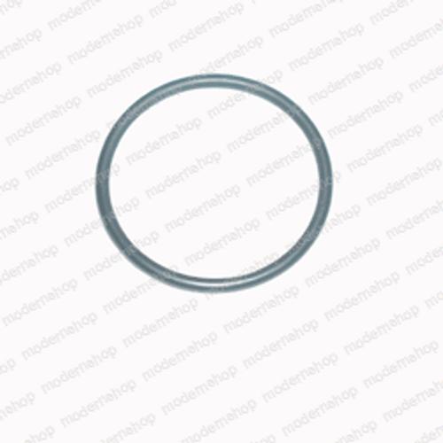 101003: Multi-Clean O-RING