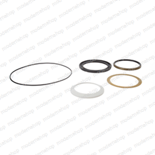 0880-586: Clarke Sweepers SEAL KIT SHAFT CHARLYNN -006