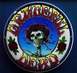 Grateful Dead Licensed Ultimate Discs Skull and Roses Bertha