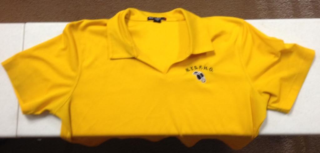 Ladies' Dry Mesh V-Neck Polo Shirt w/ Embroidered Logo