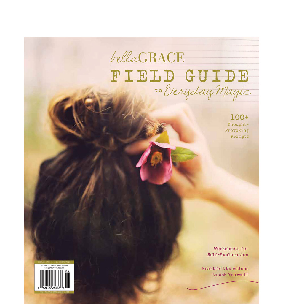 Field Guide to Everyday Magic Issue 2