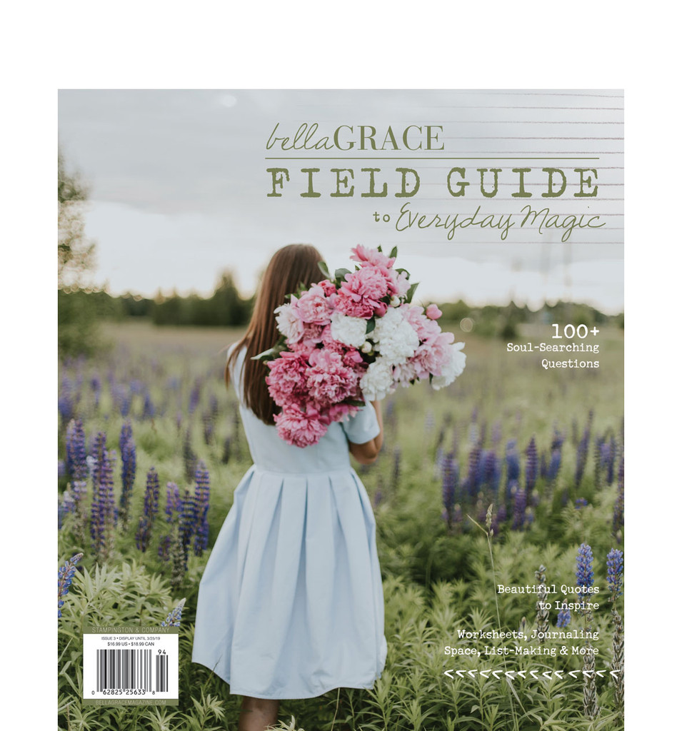Field Guide to Everyday Magic Issue 3
