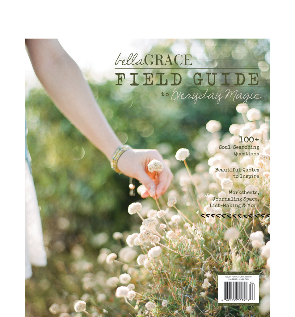 Field Guide to Everyday Magic Issue 6
