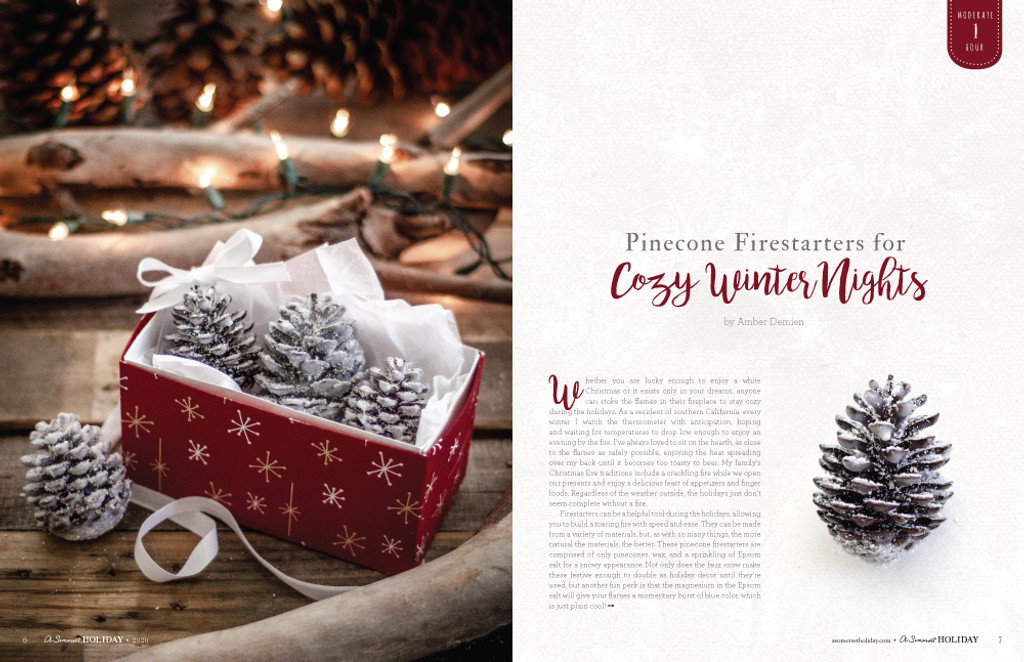 A Somerset Holiday Volume 14 Instant Download