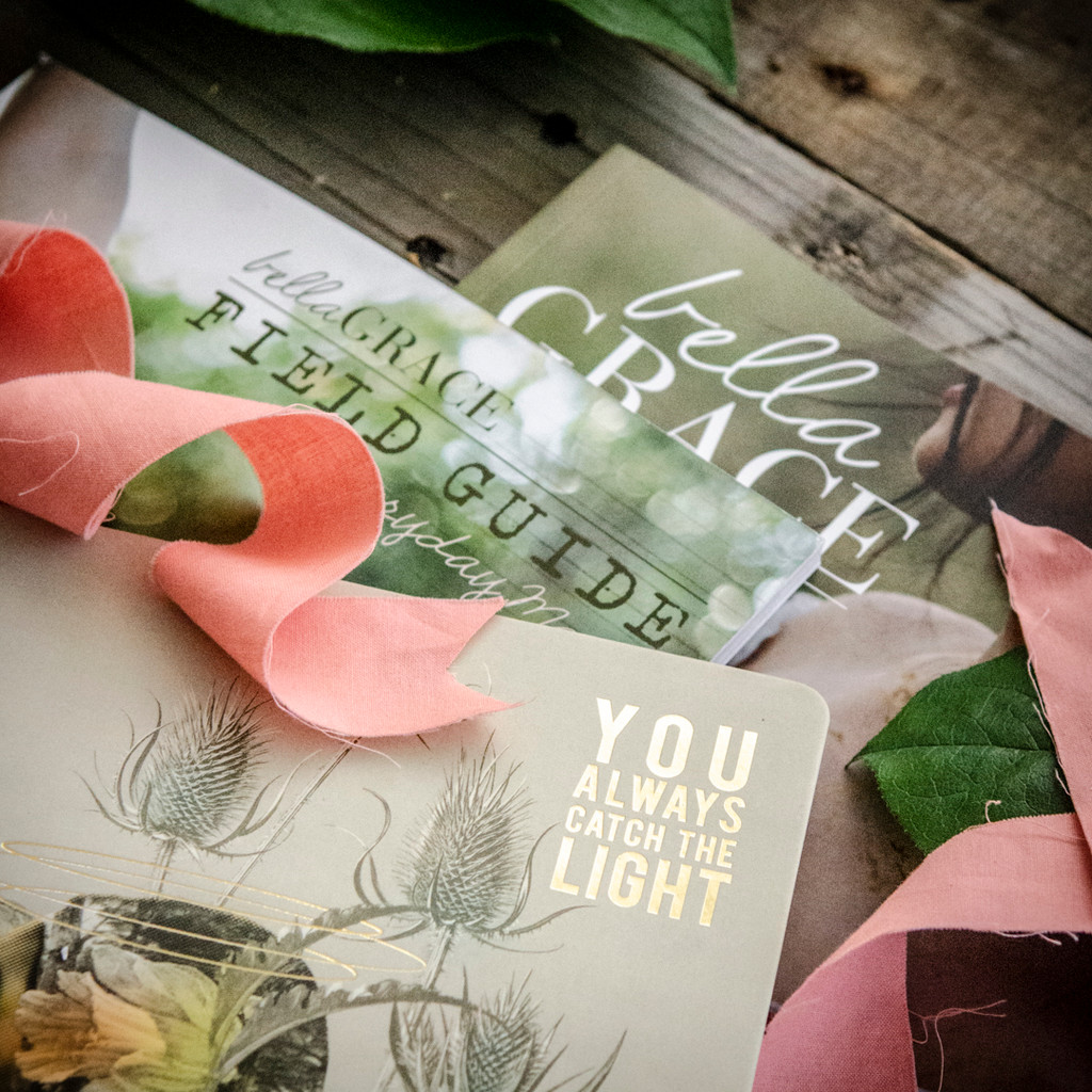 You Always Catch the Light Deluxe Bundle