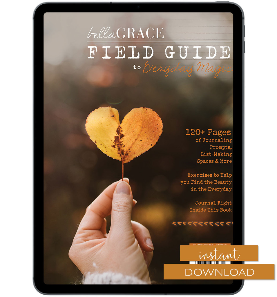 Field Guide to Everyday Magic Issue 8 Instant Download