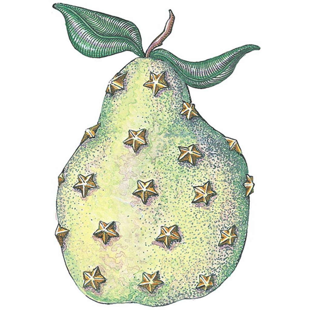 Pear With Stars Wood Mounted Stamp by Paige Nerrie