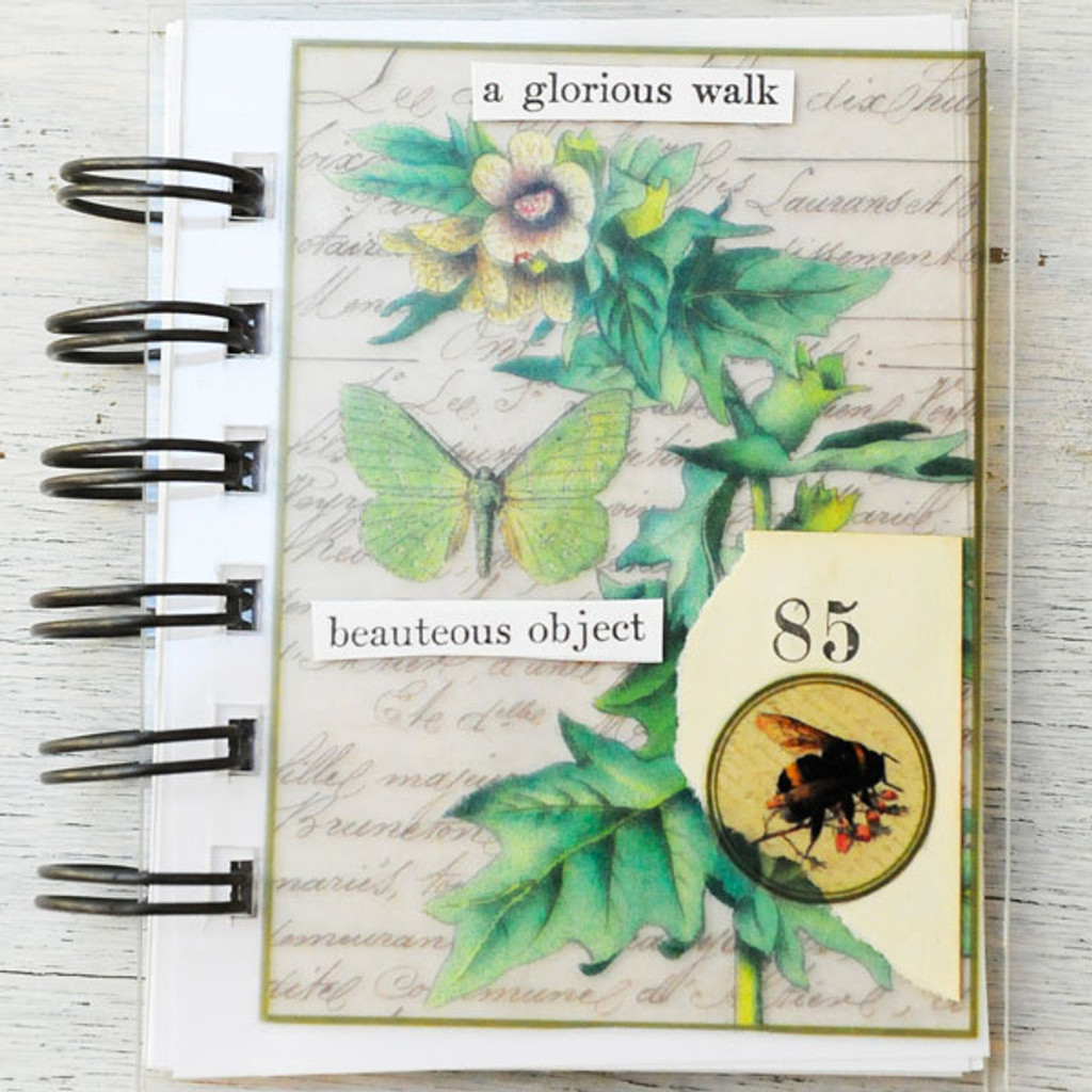Nature Mini Books  Project by Audrey Hernandez