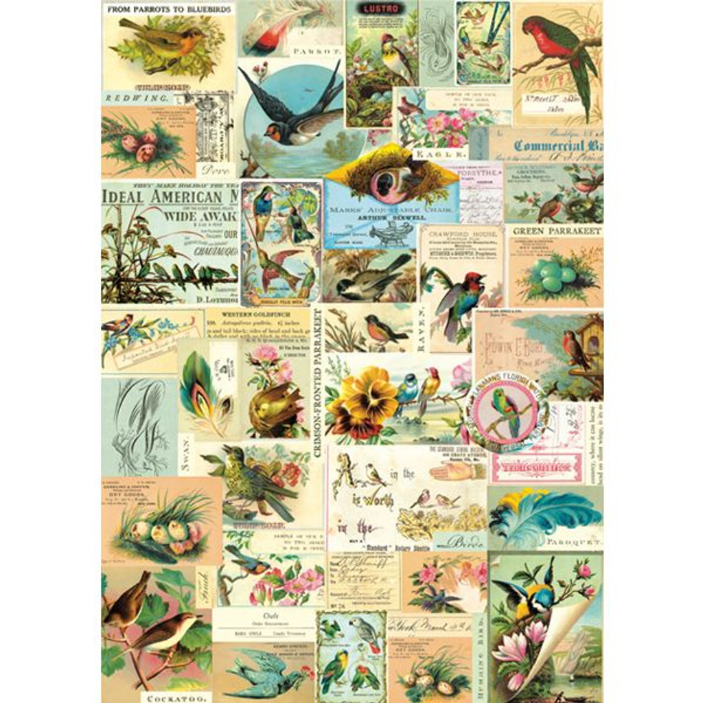 Cavallini & Co. Decorative Wrap - Bird Ephemera