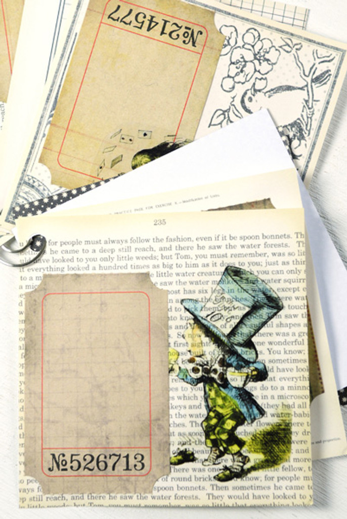 Alice in Wonderland Mini-Journal Project by Sarah Meehan