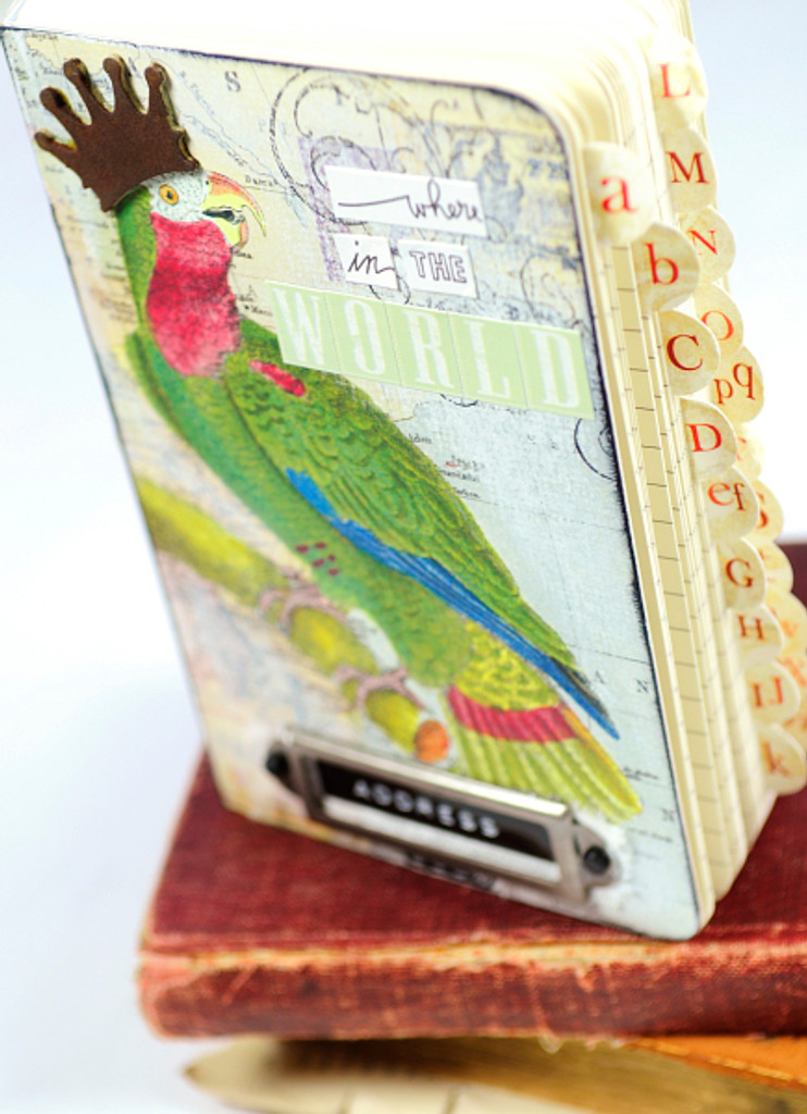 Bird Address Book Project by Audrey Hernandez