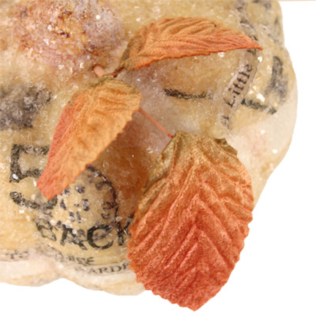 Magical Pumpkin Project by Diane Michioka