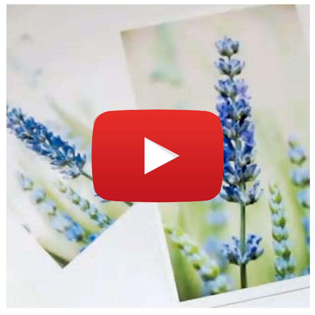 Citra Solv Photo Transfer Video By Dianne Sapra