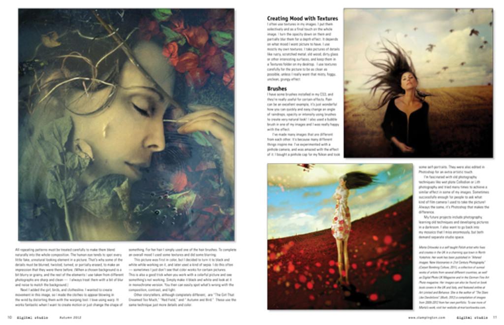 Somerset Digital Studio Autumn 2012