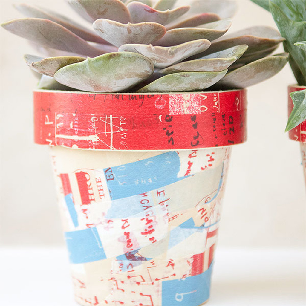 Graffiti Succulent Pots Project