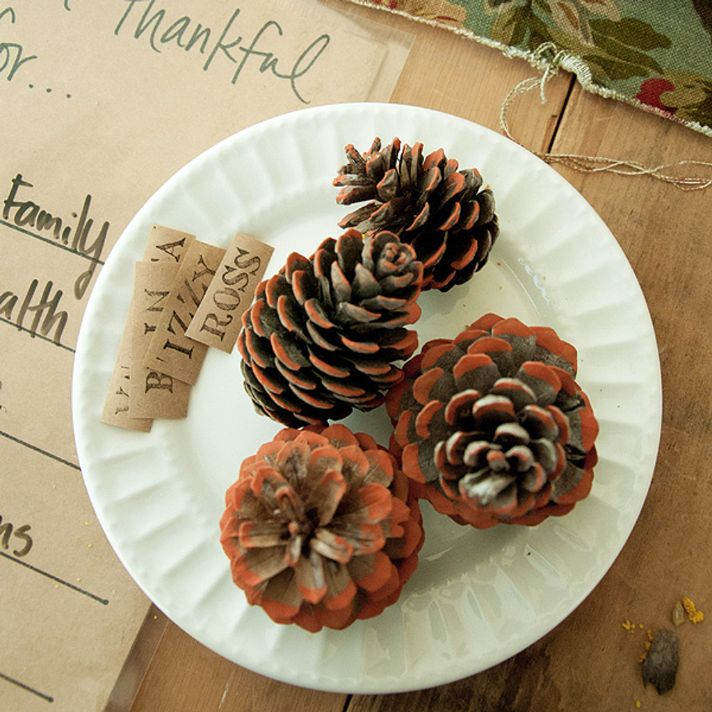 Harvest Affaire Pinecone Place Cards Project