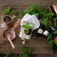 DIY Orange & Mint Sugar Scrub by Danielle Williams