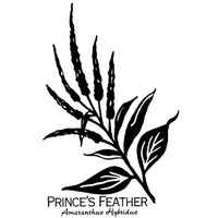 Prince's Feather - Small Wood Mounted Stamp by Classic Stampington & Company
