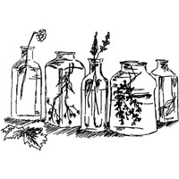 Herbal Bottles — Small Wood Mounted Stamp by Classic Stampington & Company