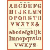 Cavallini & Co. Decorative Wrap — Alphabet