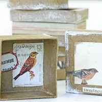 Nature's Beauty — Wee Boxes Project by Kristen Robinson