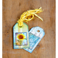 French Sunflower Designs Project by Mary Mata
