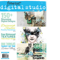 Somerset Digital Studio Spring 2015