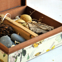 Flora and Fauna Box Project