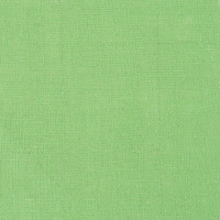 Canvas Corp Burlap Sheet — Green