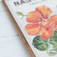 Seed Packet Project