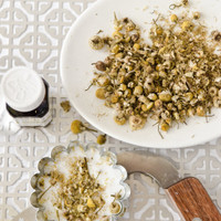 Handmade Chamomile Soaps in 5 Minutes or Less by Christen Hammons