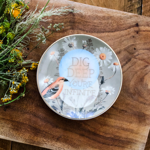 Dig Deep Trinket Tray by Papaya Art