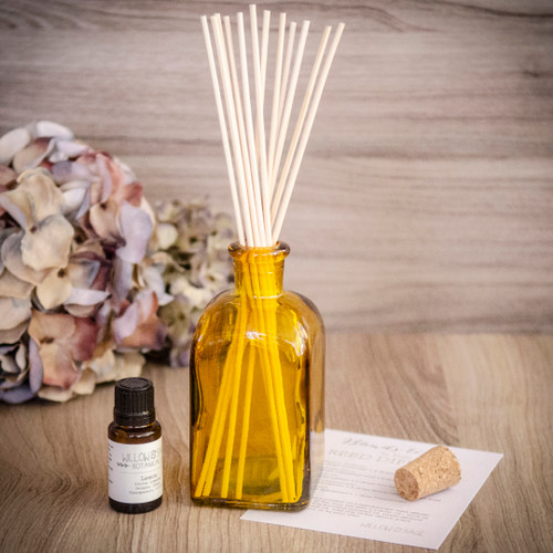 Clean Air Lemon Essential Oil Diffuser Kit