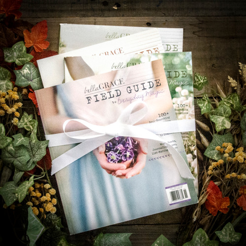 Guided Journal Gift Bundle