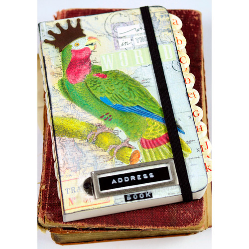 Bird Address Book Project by Audrey Hernandez