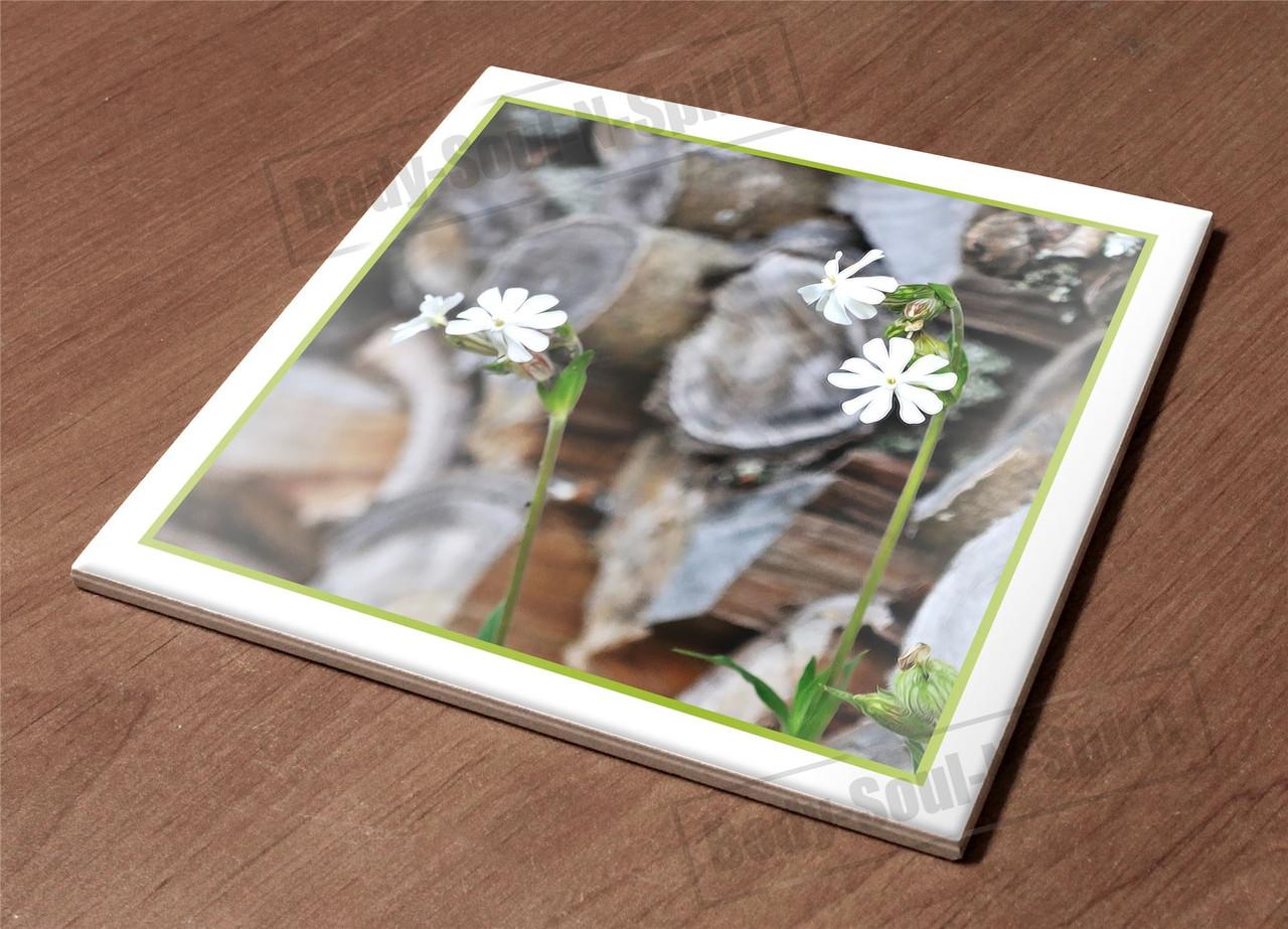 Trivet Kitchen Hot Plate Holder Ceramic Tile nature wood bladder campion  d?cor