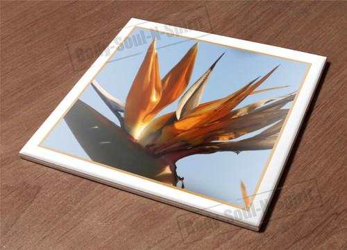 Kitchen Trivet Holder Ceramic Tile HotPlate Iplanta bird paradise exotic tropica