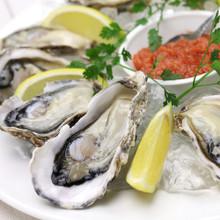 Shigoku Oysters