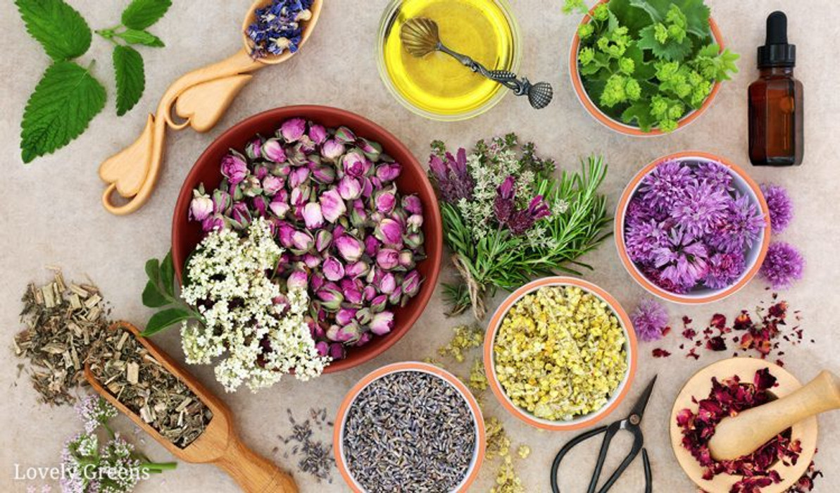 Handmade Essential Oil Products