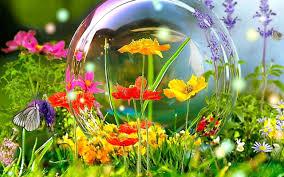 bubble-over-flower.jpg