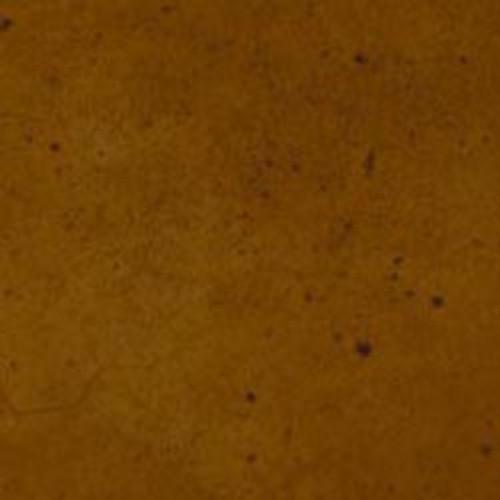 Ten Second Color - Tuscan Brown 32oz