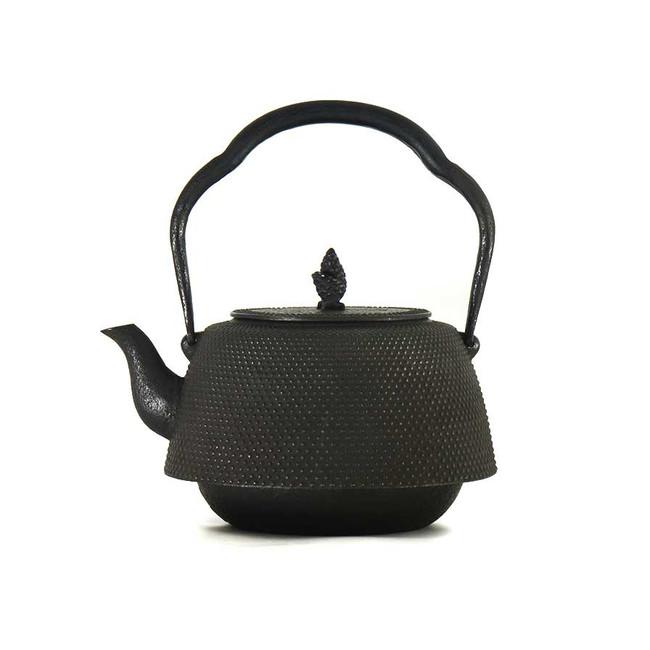 Bouilloire en fonte artisanale japonaise traditionnelle vue de côté
