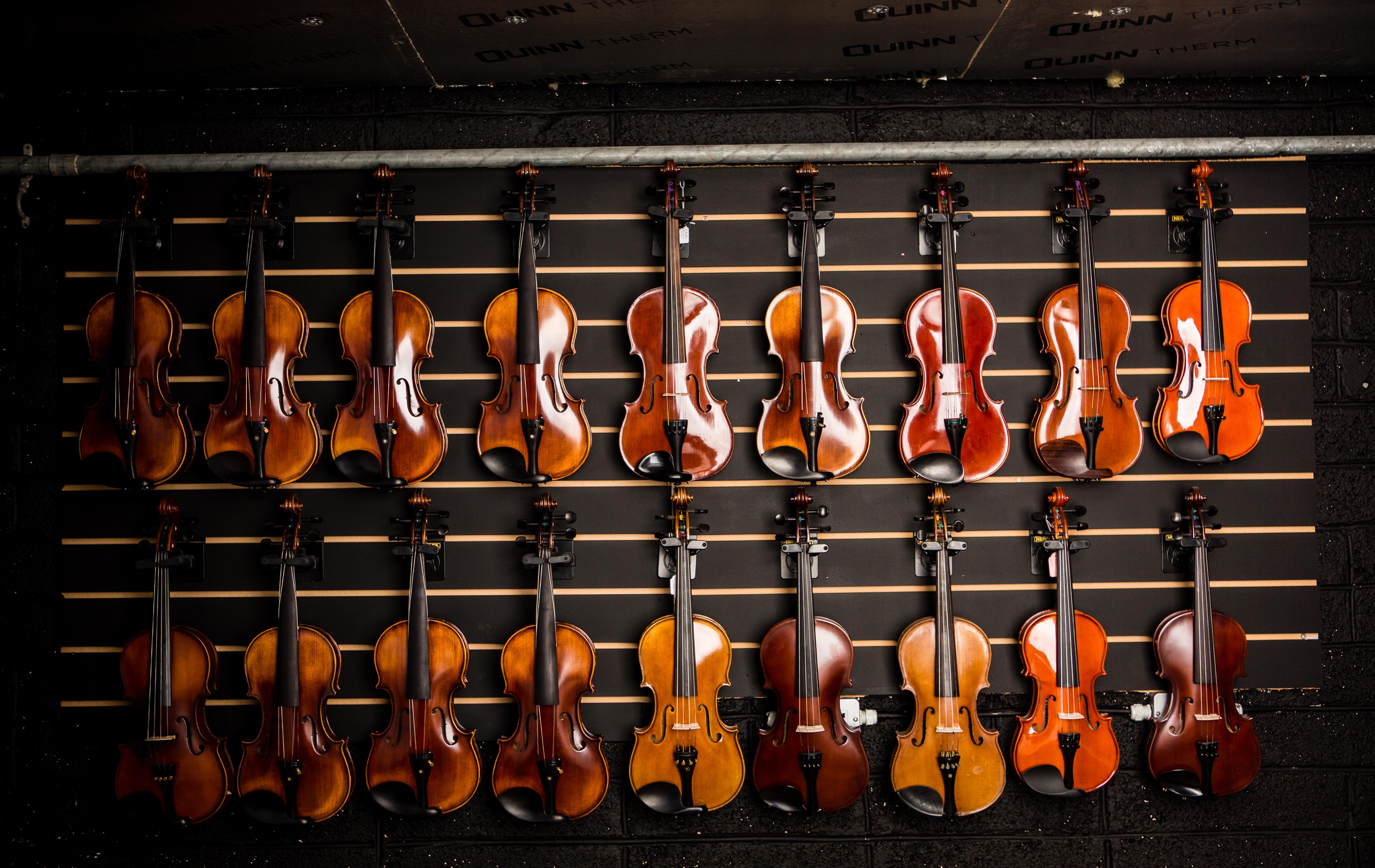 mcneela-instrument-workshop-fiddle-wall.jpg