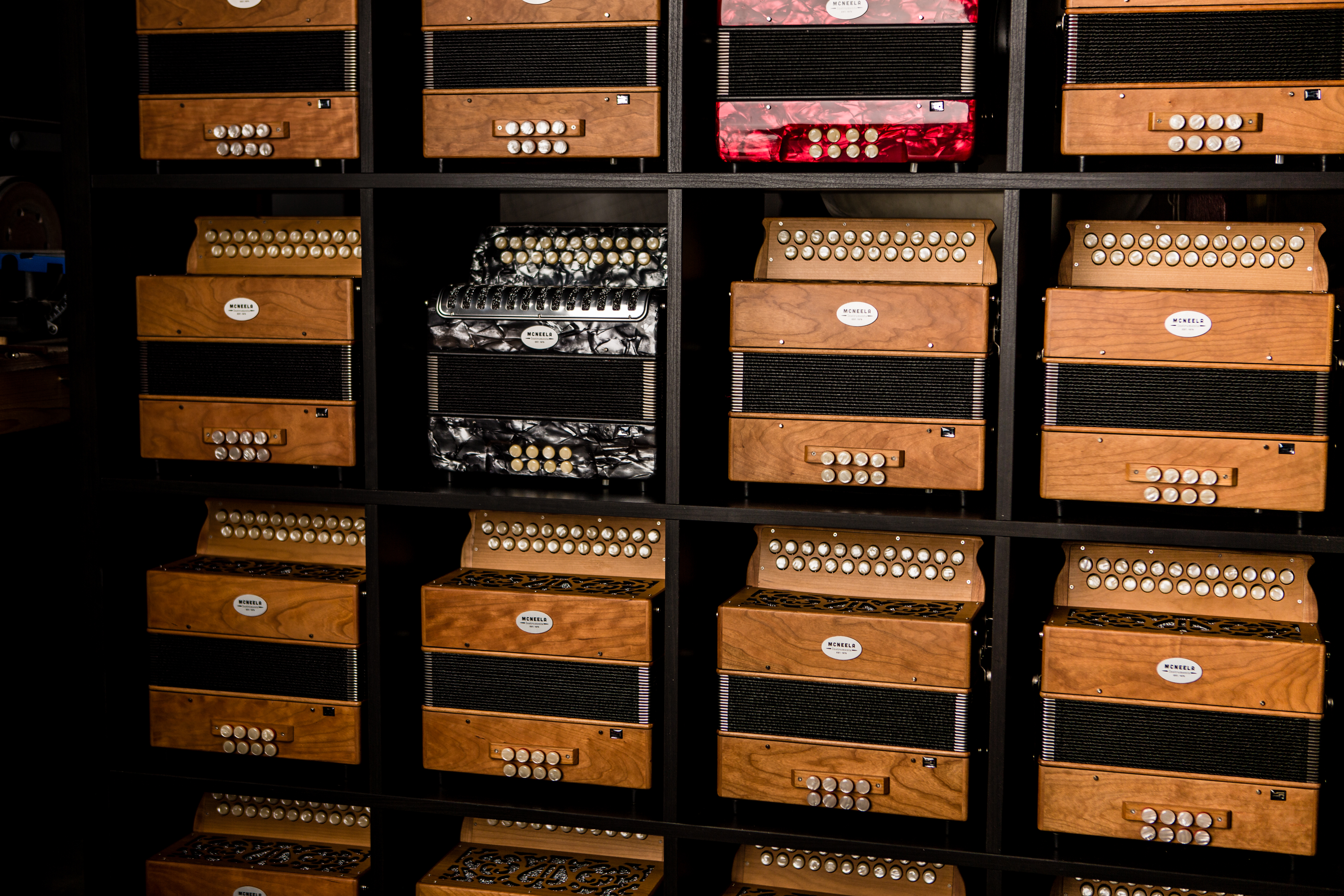 mcneela-workshop-irish-button-accordion-diatonic.jpg