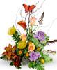 Whimsical Butterfly Garden
