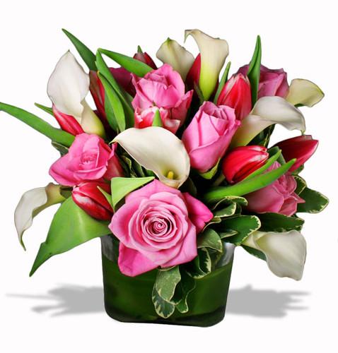 Callas, Tulips, & Roses Cube Vase